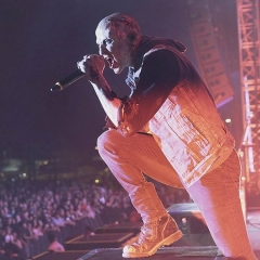 chester3